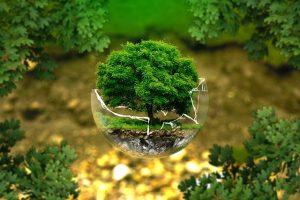 apa yang harus dilakukan agar sumber daya alam